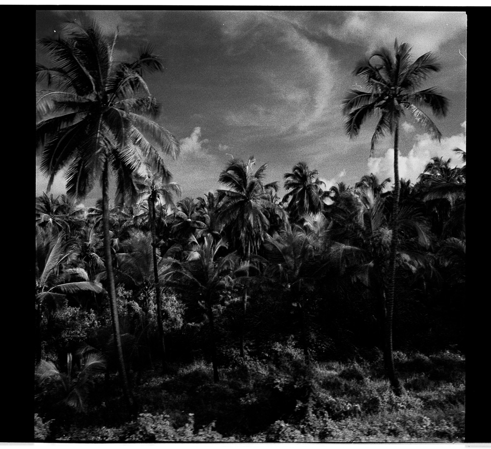 photo of GOA india by tyler cuddy